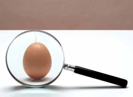 Cercare il pelo nell'uovo